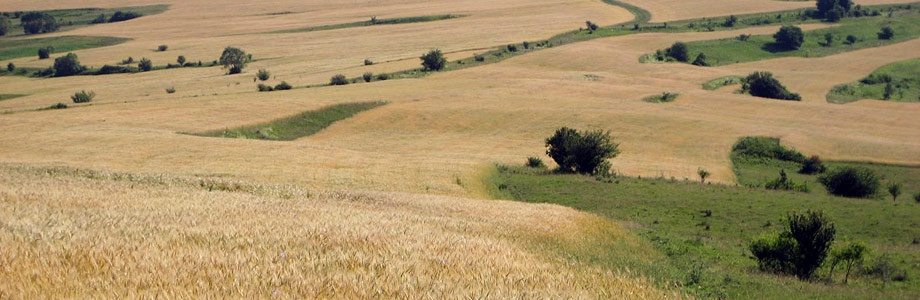 Romania has the lowest cost for arable land in Europe, says Eurostat