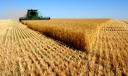 Romania's agriculture having its best year in history, with an EUR 8 billion harvest