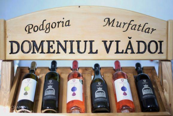 Domeniul Vladoi  wine tasting